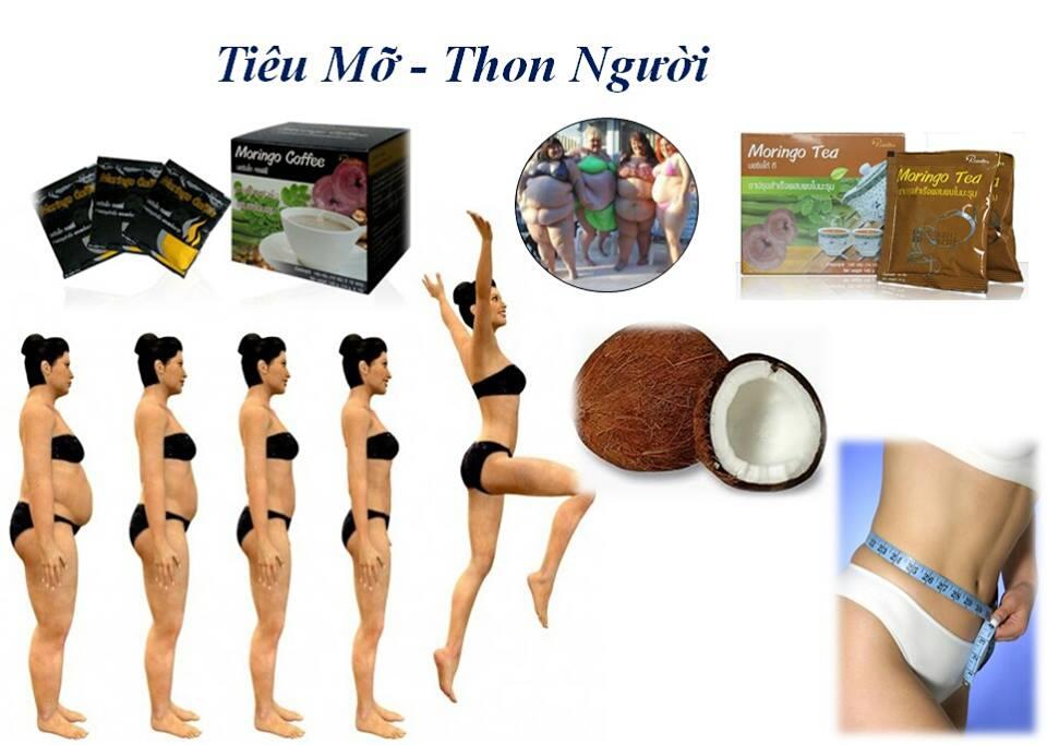 cafe Chùm Ngây, cafe giảm cân tốt cho sức khỏe