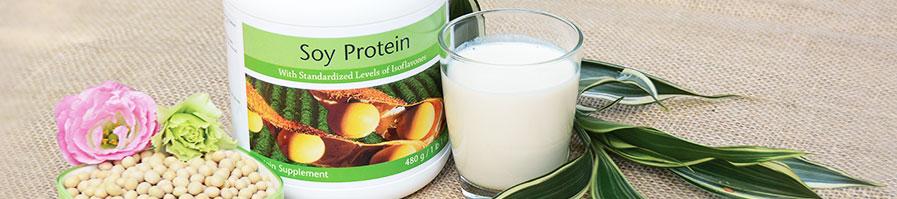 Đạm đậu nành soy protein