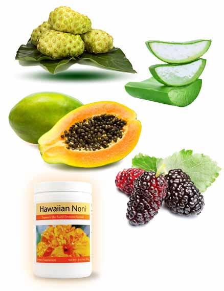 Thành phần có trong Hawaiian Noni
