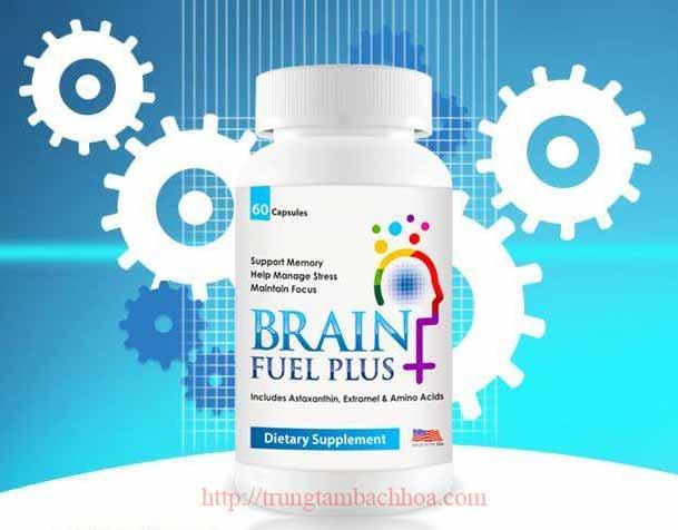 Sản phẩm Não Brain Fuel Plus