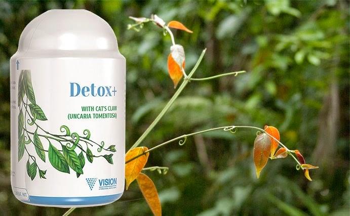 Sản phẩm Detox + của công ty Vision