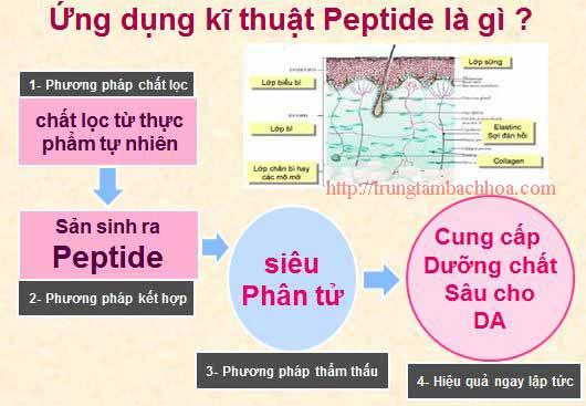 Kỹ thuật peptide