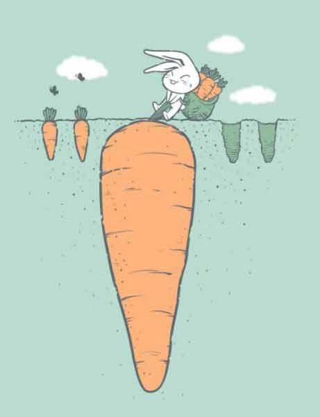 Thỏ nhổ củ cà rốt to